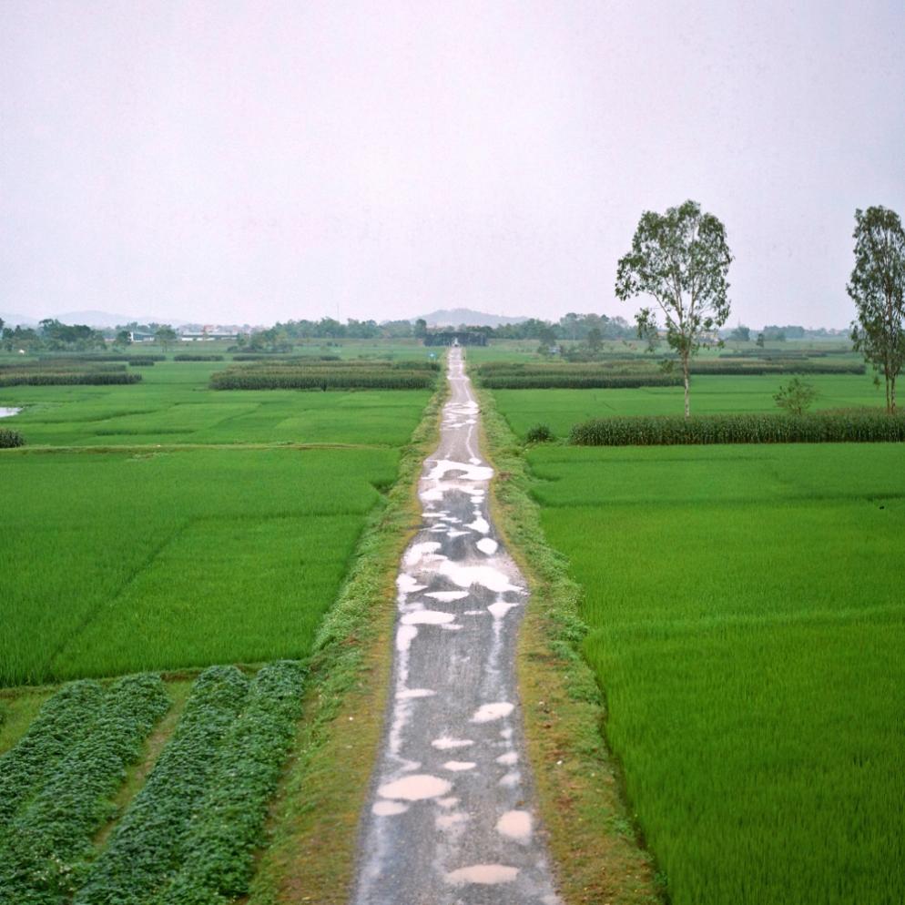 Thanh Nha Ho DT v5 1000.jpg